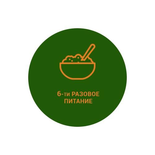 6-ти разовое питание 2